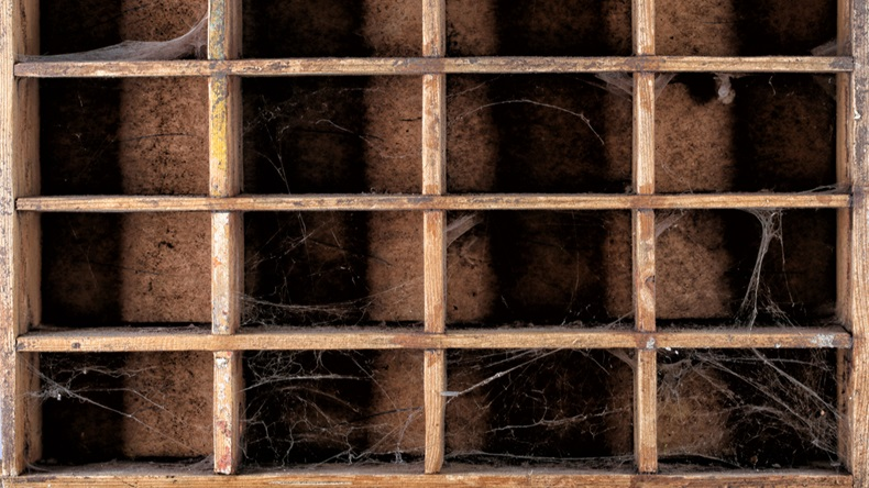 Macro texture of old Wooden box catalog with cobwebs and mold