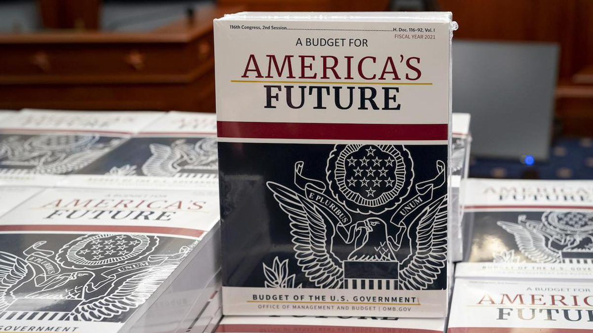 White House Budget book