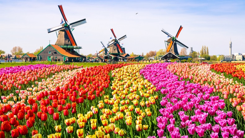 Netherlands_Windmill