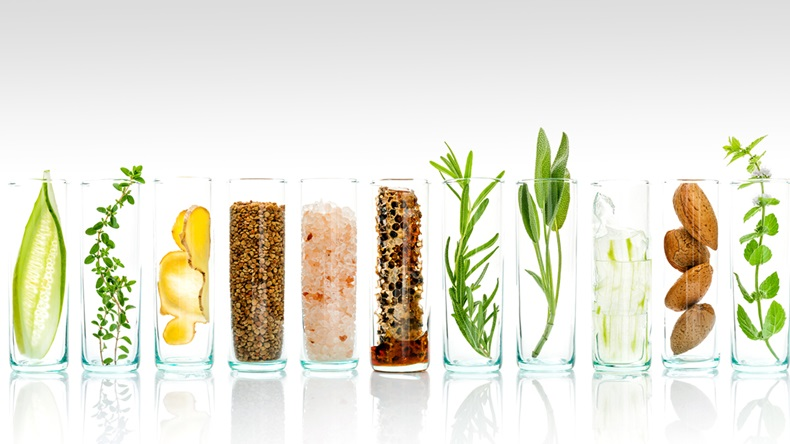 Homemade skin care with natural ingredients aloe vera, lemon, cucumber, himalayan salt, peppermint, rosemary, almonds, cucumber, ginger and honey pollen isolated on white background.